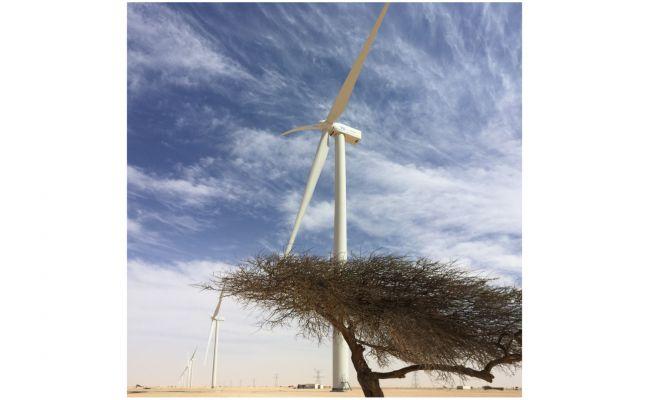 """Projekt-Update: """"We Electrify Africa"""" - Windparks für Nord- und Westafrika"""