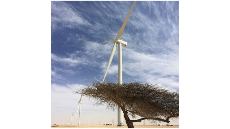 "Projekt-Update: ""We Electrify Africa"" - Windparks für Nord- und Westafrika"